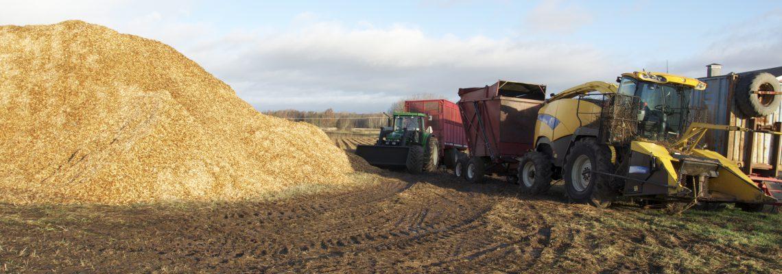 Salix traktor